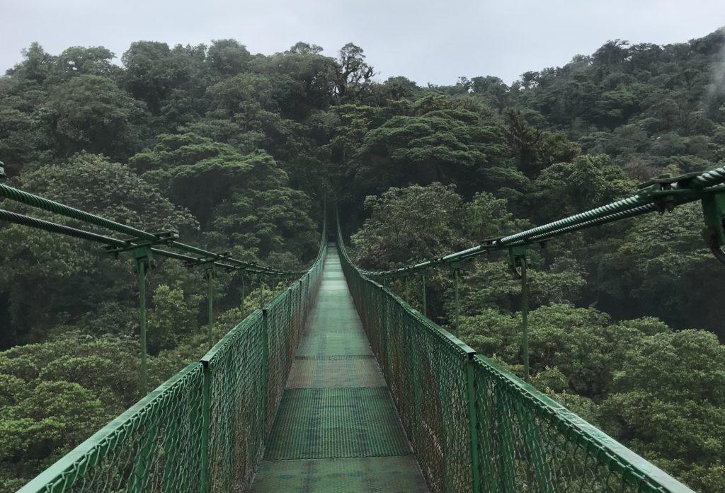 Puentes Colgantes- Monteverde